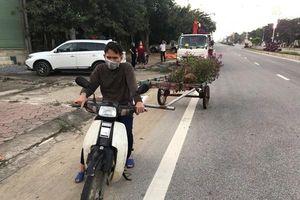 Hà Tĩnh: Trộm cắp cây cảnh trên quốc lộ, 1 đối tượng bị bắt giữ