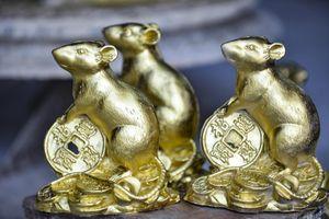 Chuột ôm tiền vàng chào xuân Canh Tý