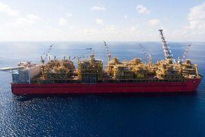 Shell có phát hiện khí quan trọng ở ngoài khơi Tây Úc