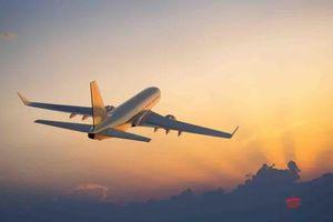 5.500 tỷ đồng lập hãng hàng không KiteAir: Cất cánh vào quý II/2020, có lãi sau 3 năm?