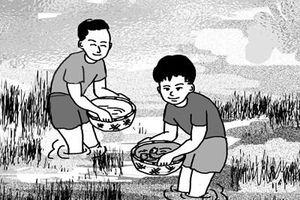 Cánh đồng tuổi thơ