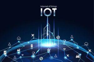 Công nghệ IoT sẽ định hình tương lai của ngành bán lẻ