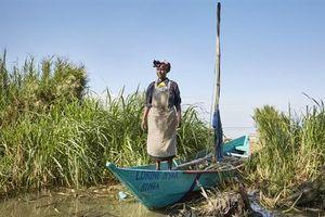 Cuộc giải thoát cho những cô gái 'đổi tình lấy cá'