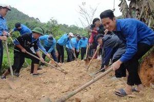 Chủ động, sáng tạo tham gia xây dựng nông thôn mới