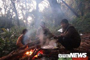 Thợ săn khát máu và tiếng súng giữa đêm vắng nơi 'vương quốc lợn rừng'