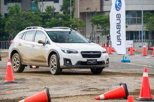 Subaru thu hồi 500.000 xe vì lỗi túi khí có thể phát nổ