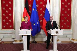 Tổng thống Nga Putin và Thủ tướng Đức Merkel thảo luận điều gì?