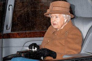 Vụ Hoàng tử Harry: Nữ hoàng Anh triệu tập gấp cuộc họp Hoàng gia
