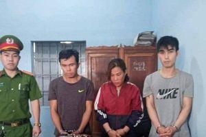 Bắt tạm giam người phụ nữ và đồng bọn tổ chức trộm chó