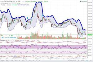 Cổ phiếu ANV 'lao dốc' mạnh vì đâu?