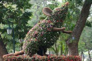 Hà Nội trang trí hoa, cây cảnh phục vụ Tết Nguyên đán Canh Tý 2020