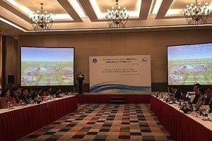 JICA hỗ trợ phát triển chuỗi giá trị thực phẩm tại Việt Nam