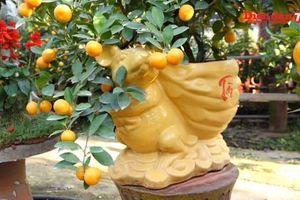 Độc đáo 'chuột vàng cõng quất bonsai' hút khách dịp Tết