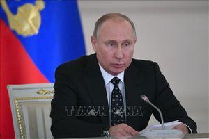 Tổng thống Nga dự hội nghị quốc tế về Libya