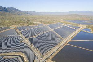 Đức Long Gia Lai (DLG) hoàn thành dự án điện mặt trời 50MWp chỉ trong 3,5 tháng
