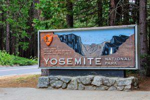 Mỹ: Trên 170 người mắc bệnh nghi do novovirus tại Công viên quốc gia Yosemite