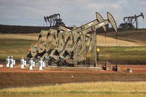 Giá xăng, dầu (18/1): Tiếp tục tăng