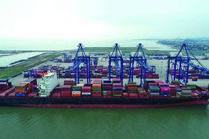 Điện tử hóa toàn bộ thủ tục, hàng hải sẵn sàng vươn ra biển lớn