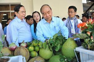 Chuyện Thủ tướng tiếp nhận ý kiến của GS. Võ Tòng Xuân