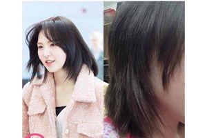 Cận Tết, dân mạng nhao nhao tố thợ làm tóc không có tâm