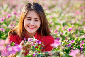 Mãn nhãn sắc Xuân trên đất Thủ ngày cận Tết