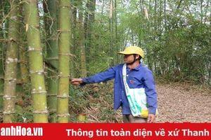 Phát triển kinh tế ở xã Nam Xuân