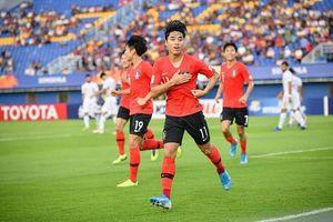 Lịch thi đấu U23 châu Á 2020 ngày 19/1: U23 Hàn Quốc đấu U23 Jordan
