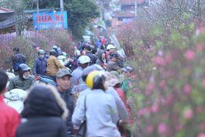 Chợ hoa Quảng An 'nghẹt thở' ngày giáp Tết