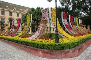 Vườn hoa xuân rộng hàng nghìn m2 ở Yên Bái