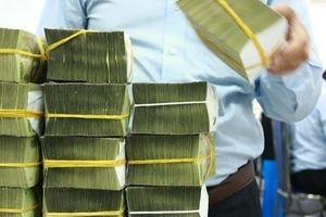 Bức tranh tài khóa Việt Nam năm 2020