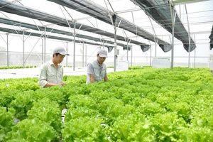 Mong muốn cộng đồng DN thủ đô có nhiều đóng góp trong lĩnh vực nông nghiệp