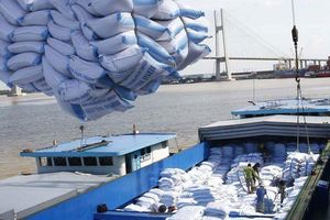 Cơ hội cho nhà thầu Việt xuất khẩu gạo vào Hàn Quốc