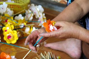 Tỉnh Thừa Thiên-Huế: Sắc Tết ở làng hoa giấy Thanh Tiên