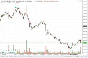 Nhà đầu tư tiếp tục quay lưng với cổ phiếu MPC?