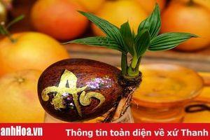 Người 'thổi hồn' cho trái cây