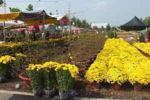 Đa dạng các loại hoa, kiểng được bày bán tại phường An Thạnh