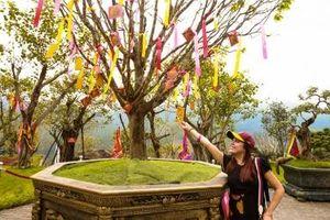 Công viên suối nước khoáng nóng Núi Thần Tài tổ chức nhiều hoạt động vui xuân đón Tết Canh Tý