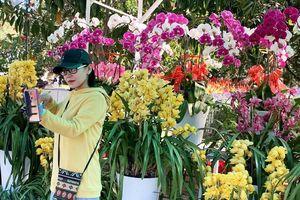 Muôn hoa khoe sắc rực rỡ tại Hội hoa xuân Đà Lạt