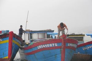 Nhiều ngư dân Nghĩa An đón Tết ngoài khơi xa