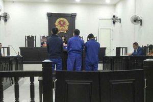 'Ông trùm' buôn bán hổ xuyên quốc gia lãnh án 6 năm tù