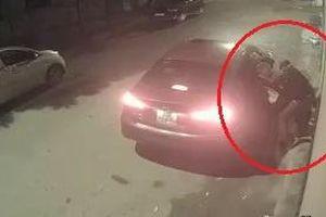 Lái ôtô đi trộm hoa Tết bất thành vì chậu quá nặng