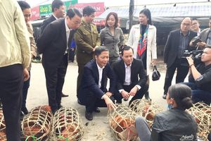 Bộ trưởng Công Thương mua gà, kiểm tra tình hình thị trường Tết tại Lạng Sơn