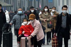 Dịch bệnh viêm phổi do virus corona: WHO họp khẩn cấp