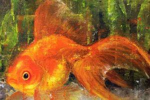 Vì sao người Việt xưa 'nghiện' chơi cá vàng vào ngày Tết Nguyên Đán?