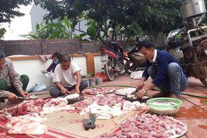 Giá tăng kỷ lục, người dân quê vẫn tưng bừng đụng lợn đón Tết