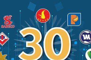 30 công ty đại chúng lớn nhất Việt Nam: Sự trỗi dậy của doanh nghiệp tư nhân