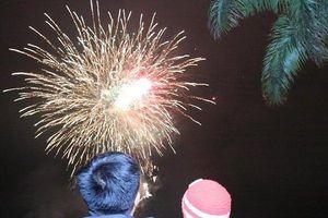 Chúc mừng năm mới 2020: Lung linh màn bắn pháo hoa trên cả nước thời khắc Giao thừa