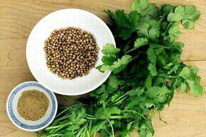 Lưu ý cần tránh khi ăn rau mùi kẻo rước ung thư vào người