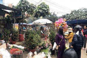 Những phiên chợ cuối năm đa sắc màu nơi địa đầu tổ quốc
