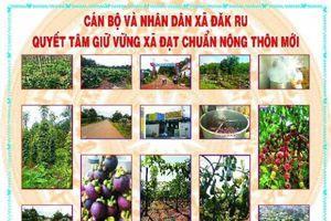 Huyện Đăk R'lấp: Nỗ lực hoàn thành xây dựng huyện nông thôn mới